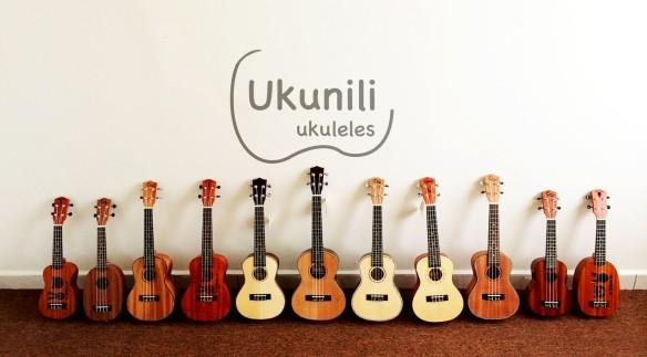 Online Ukulele shop malaysia